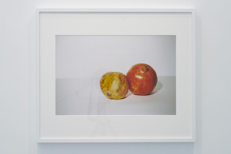 c-print  ︱  320 x 480mm