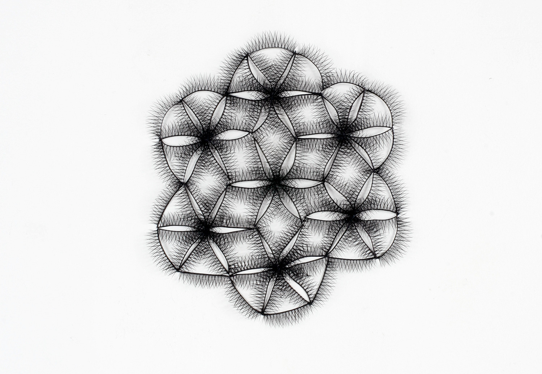 decorated - 2010 ︱ false eyelash ︱ dimension variable